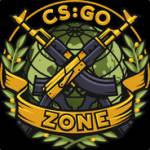 review of csgozone